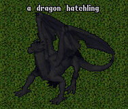 Evolution Dragon Drake