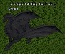 Evolution Dragon the Ancient Wyrm